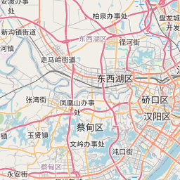 Map of Wuhan